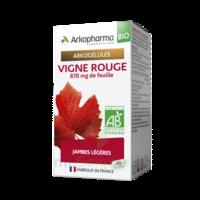 Arkogélules Vigne Rouge Bio Gélules Fl/45 à Paris