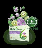 Phytoxil Transit Comprimés B/20 à Paris