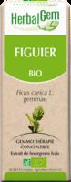 Herbalgem Figuier Macerat Mere Concentre Bio 30 Ml à Paris