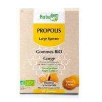 Herbalgem Propolis Large Spectre Gomme Bio B/24 à Paris