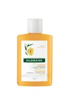 Klorane Capillaire Shampooing Beurre De Mangue 25ml à Paris