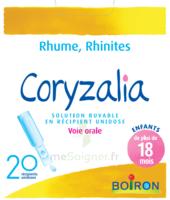 Boiron Coryzalia Solution Buvable Unidose B/20 à Paris