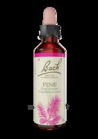 Fleurs De Bach® Original Pine - 20 Ml à Paris