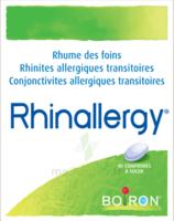 Boiron Rhinallergy Comprimés B/40 à Paris