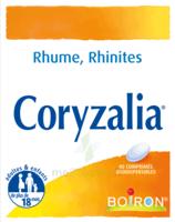 Boiron Coryzalia Comprimés Orodispersibles à Paris