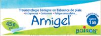 Boiron Arnigel Gel T/45g à Paris